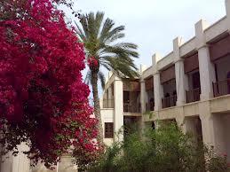 باید حس شهروندی، تعلق وسرزندگی در بافت قدیم بوشهر ایجاد شود