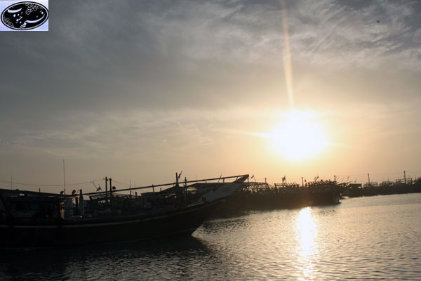 عکسهای دیدنی از بندرگاه بوشهر