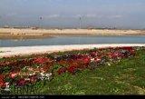 گزارش تصویری تلاش کارگران و آماده سازی فاز 1 دهکده گردشگری بوشهر