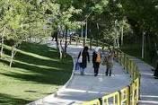 440 پروژه بوستان روستايي در استان بوشهر در دست ساخت است