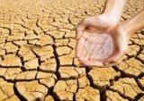 آینده آب نگران کننده بوشهر؛ چه فرجامی در انتظار ماست؟