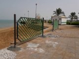دریابست به ساحل بوشهر هم رسید