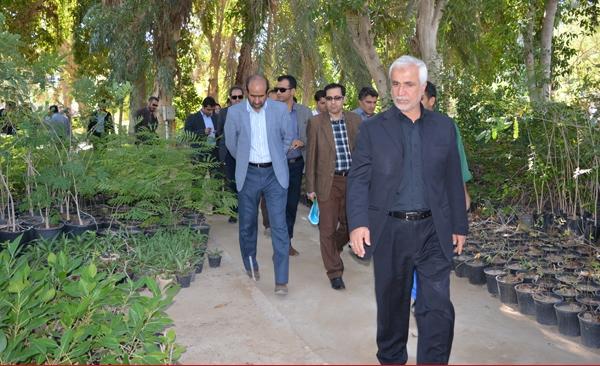 قانون ممنوعیت بکارگیری بازنشستگان مانع تداوم فعالیت میگلی نژاد شهردار بوشهر شد
